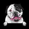 American Bulldog Black