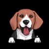 Beagle Black Red White