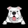 Bulldog (White)