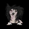 Chinese Crested Dog (Black)