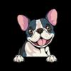 French Bulldog (Frenchie) Black White