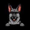 German Shepherd (Black)
