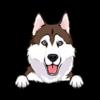 Husky (Tan White)