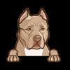 Pit Bull (Fawn)