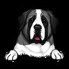 Saint Bernard (Black White)