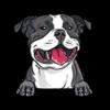 Staffordshire Bull Terrier (Black White)