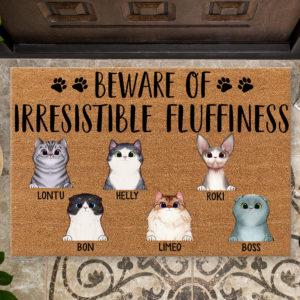 Personalized Beware Of Irresistible Fluffines Custom Cat Doormat2