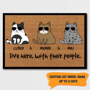 Personalized Cat Lives Here With Their People Custom Doormat