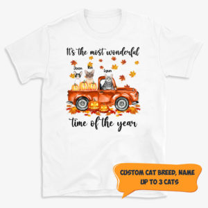Personalized It's The Most Wonderful Time Of The Year Pumpkin Car Custom Cat Halloween Shirt