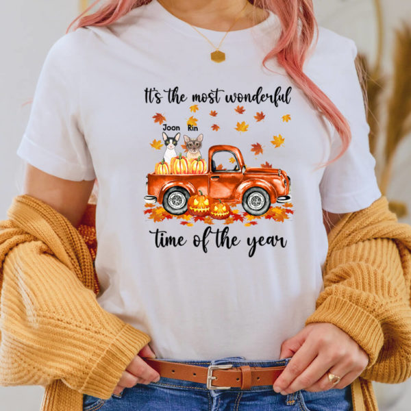 Personalized Its The Most Wonderful Time Of The Year Pumpkin Car Custom Cat Halloween Shirt2