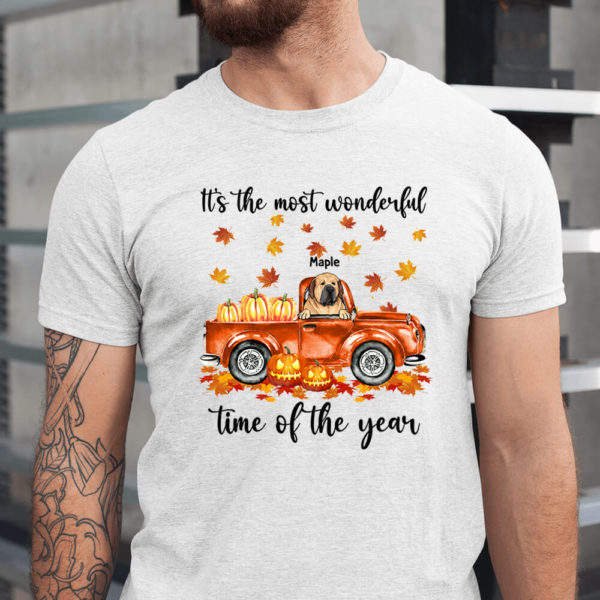 Personalized Its The Most Wonderful Time Of The Year Pumpkin Car Custom Dog Halloween Shirt1