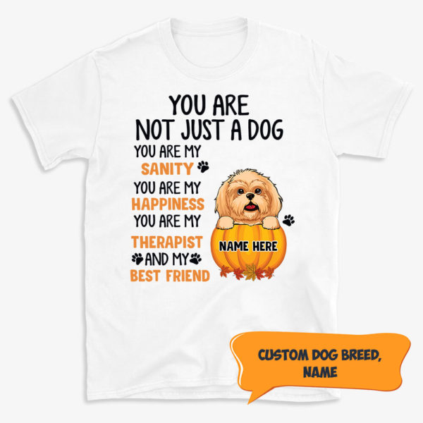 Personalized You are not just a Dog You are my Sanity Happiness Therapist Best Friends Custom Halloween Dog Shirt