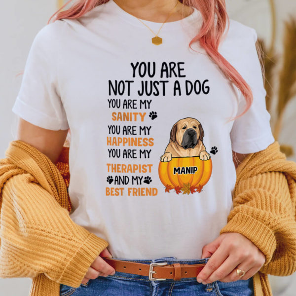 Personalized You are not just a Dog You are my Sanity Happiness Therapist Best Friends Custom Halloween Dog Shirt2